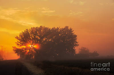 Photograph - Foggy Silhouette by Robert Bales