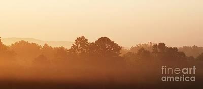 Photograph - Foggy Sunrise by Julie Clements