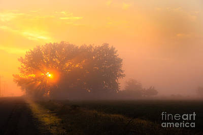 Photograph - Foggy Sunrise by Robert Bales