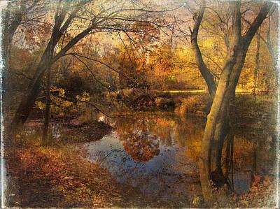 Foliage Canvas Art Print by John Rivera