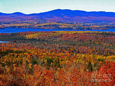 Foliage From Height Of Land Art Print