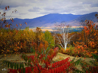 Photograph - Foliage Galor From Sugar Hill New Hampshire by Nancy Griswold