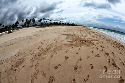 Follow The Footprints Art Print