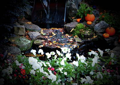 Photograph - Font Yard Waterfall In Autumn by Laura  Grisham