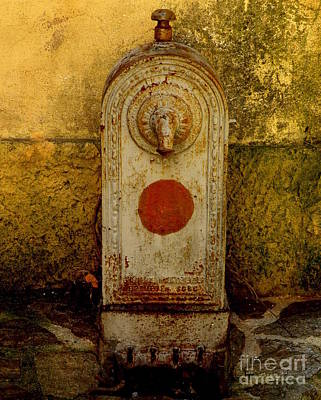 Fontaine D'eau Art Print by Lainie Wrightson