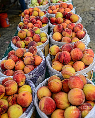 In Baskets Photograph - Food - Harvested Peaches by Paul Ward