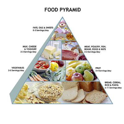 Food Pyramid Print by David Munns