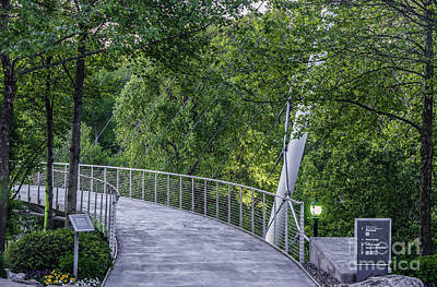 Photograph - Foot Bridge Over Reedy by David Waldrop