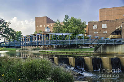 Photograph - Foot Bridge Over Reedy II by David Waldrop