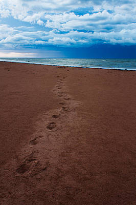 Foot Prints To The Sea Art Print by Matt Dobson
