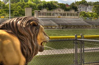 Photograph - Football Lions by Coby Cooper