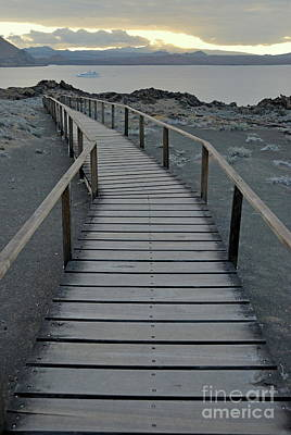 Footbridge On Volcanic Landscape Art Print by Sami Sarkis