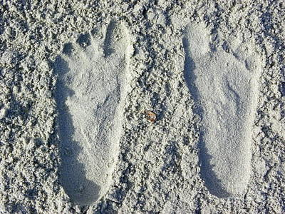 Art Print featuring the photograph Footprints by Eve Spring