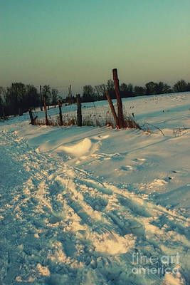 Photograph - Footprints In The Snow by Jutta Maria Pusl