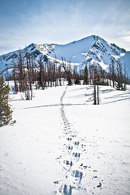 Footprints Leads To Frosty Mountain Art Print by Christopher Kimmel