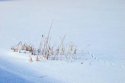 Footprints On Snow Art Print by Paul Ge