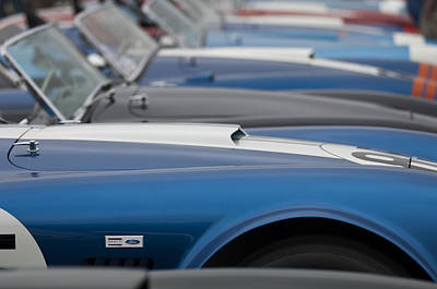 Photograph - Ford Shelby Cobras by Jill Reger