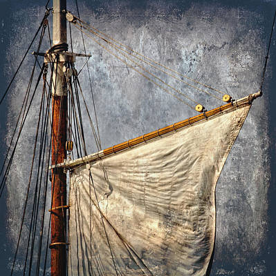 Photograph - Foresail by Fred LeBlanc