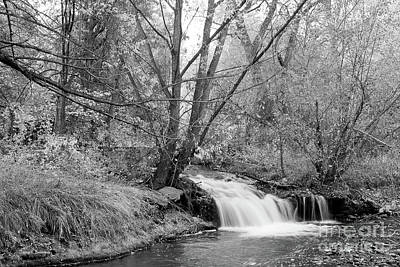 Photograph - Forest Creek Waterfall In Black And White by James BO Insogna