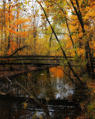 Photograph - Forest Foot Bridge by Scott Hovind