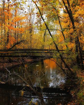Photograph - Forest Foot Bridge by Scott Hovind