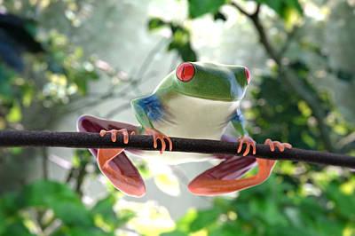 Forest Frog Art Print by Ilendra Vyas