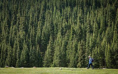 Mountain Photograph - Forest by Konstantin Dikovsky