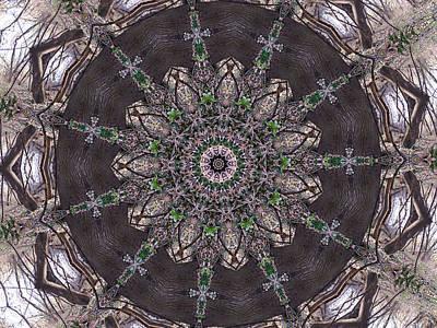 Digital Art - Forest Mandala 3 by Rhonda Barrett