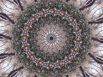 Digital Art - Forest Mandala 5 by Rhonda Barrett