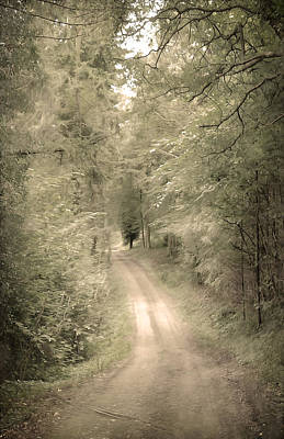 Forest Path Art Print by Svetlana Sewell