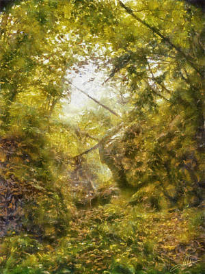 Clearing Digital Art - Forest Ravine by Dale Jackson