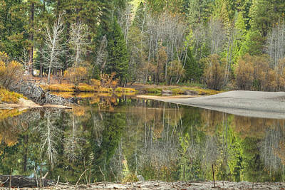 Forest Reflection-merced River Art Print by Ron Schwager