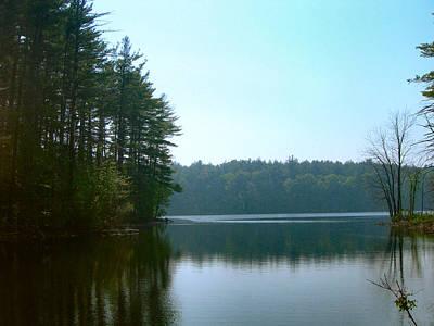 Jeff Johnson Photograph - Forest Reservoir by Jeff Johnson