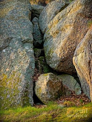 Photograph - Forest Rocks by Lutz Baar