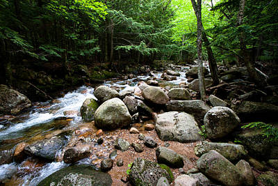 Photograph - Forest Stream by Jason Smith