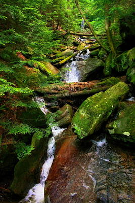 Photograph - Kildoo Falls At Mcconnells Mill State Park In Portersville, Pennsylvania  by Angela Rath