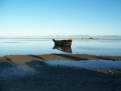 Art Print featuring the photograph Forgotten Boat Wreck Near Motueka by Peter Mooyman