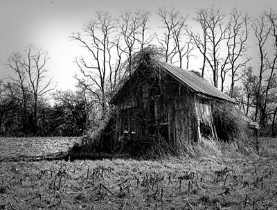 Photograph - Forgotten Out-building by Trudy Wilkerson