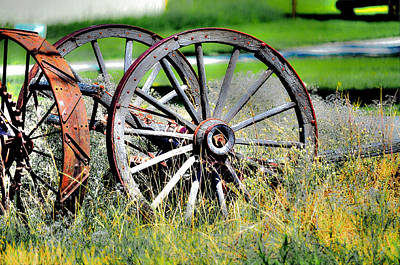 Forgotten Wagon Wheel Art Print by Sarai Rachel