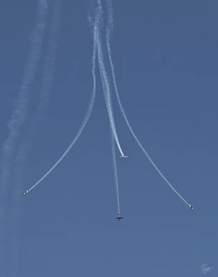Photograph - Formation Flying  by Endre Balogh