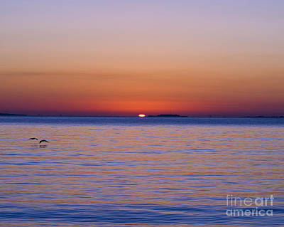 Fort Sumter Sunrise Art Print by Al Powell Photography USA