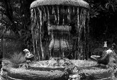 Photograph - Fountain by RicardMN Photography