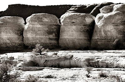 Geology Photograph - Four Boulders by Marilyn Hunt