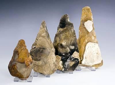 Handaxe Photograph - Four British Paleolithic Handaxes by Paul D Stewart