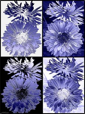 Digital Art - Four Interpretations Of Anemone In Blue by J McCombie