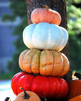 Photograph - Four Pumpkins by Jai Johnson