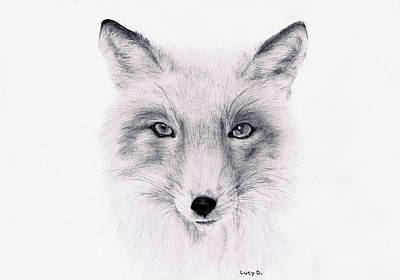 Art Print featuring the drawing Fox by Lucy D