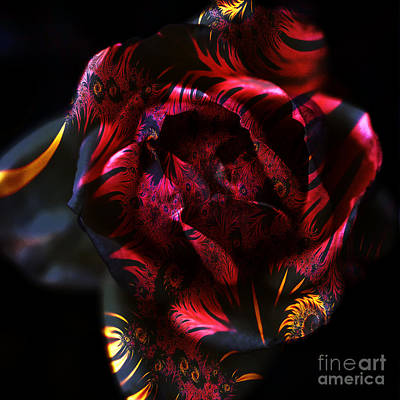 Photograph - Fractal Floral by Clayton Bruster