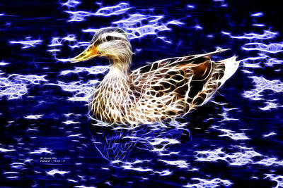 Fractal - Mallard In Pond- 9164 Art Print by James Ahn