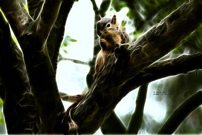 Digital Art - Fractal - Thumb Sucker - Robbie The Squirrel - 8574 by James Ahn